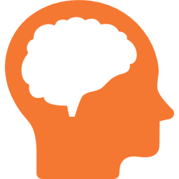 brain_and_head_256