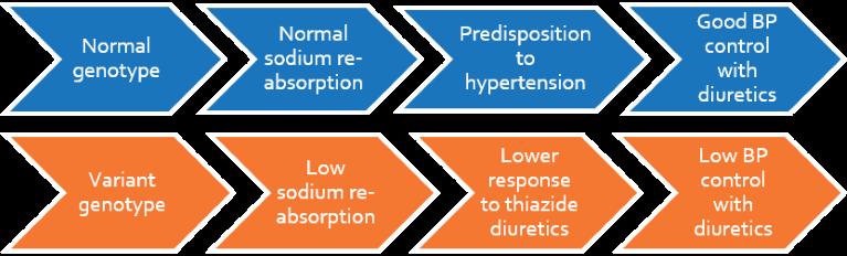 Literature review alternative treatment of hypertension