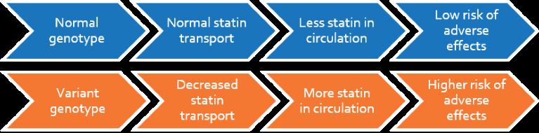 statins_flow